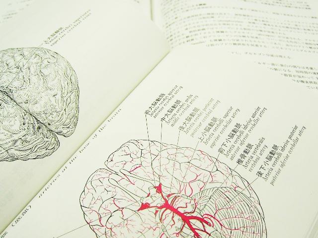 脳卒中ガイドラインから見る寝返り