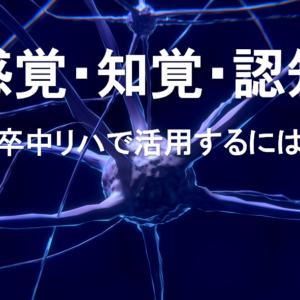 「感覚・知覚・認知」脳卒中リハで活用するには?